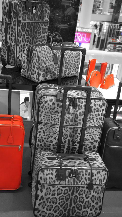 Dolce & Gabbana Leoparden, Leo, Animal-Print Koffer