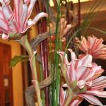 Blumen Hotel